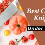 Best Chef Knife under 100