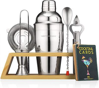 Modern Mixology Bartender Kit - best professional bartender kit