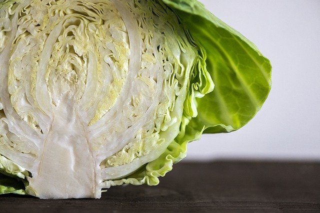 Can you freeze cabbage raw
