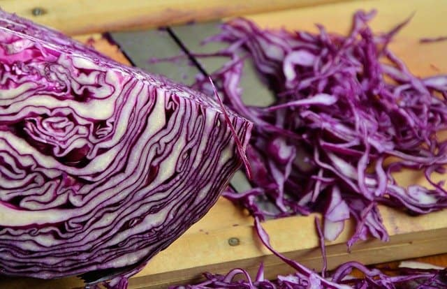 Can you freeze shredded cabbage