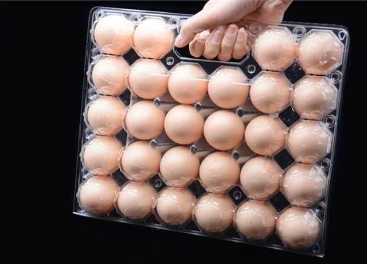 can you freeze scrambled eggs