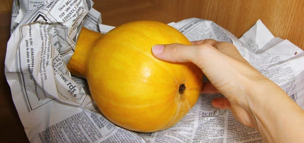 how to freeze butternut squash