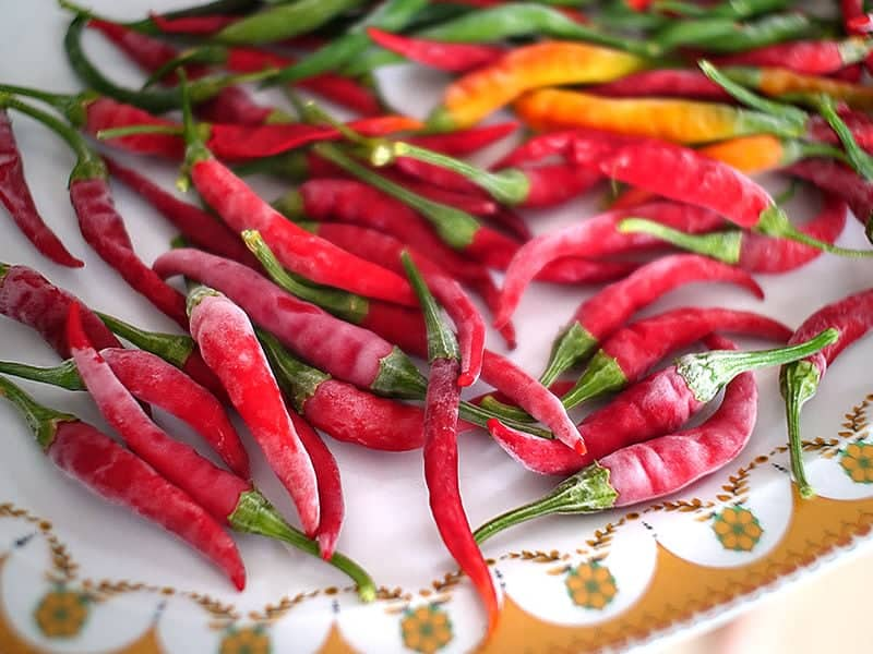 Can you f6eeze chilli