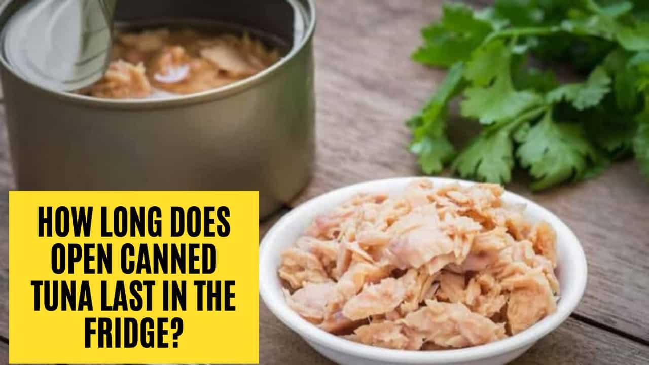 how long does tuna last in fridge