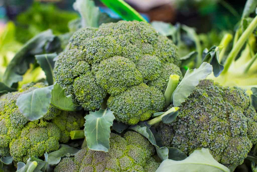 Throw Out Broccoli