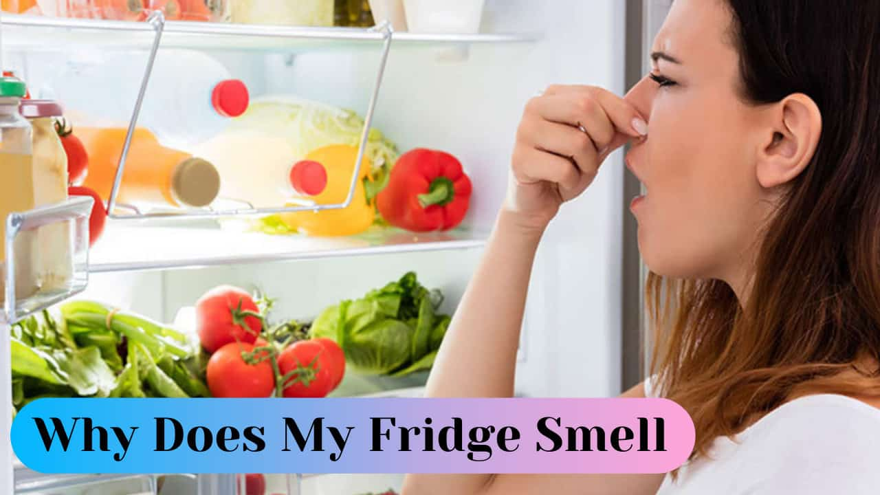 why does my fridge smell