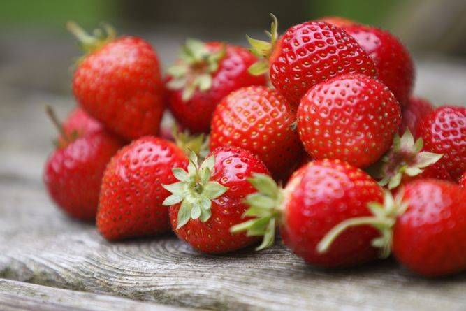 frozen strawberries just as good as fresh